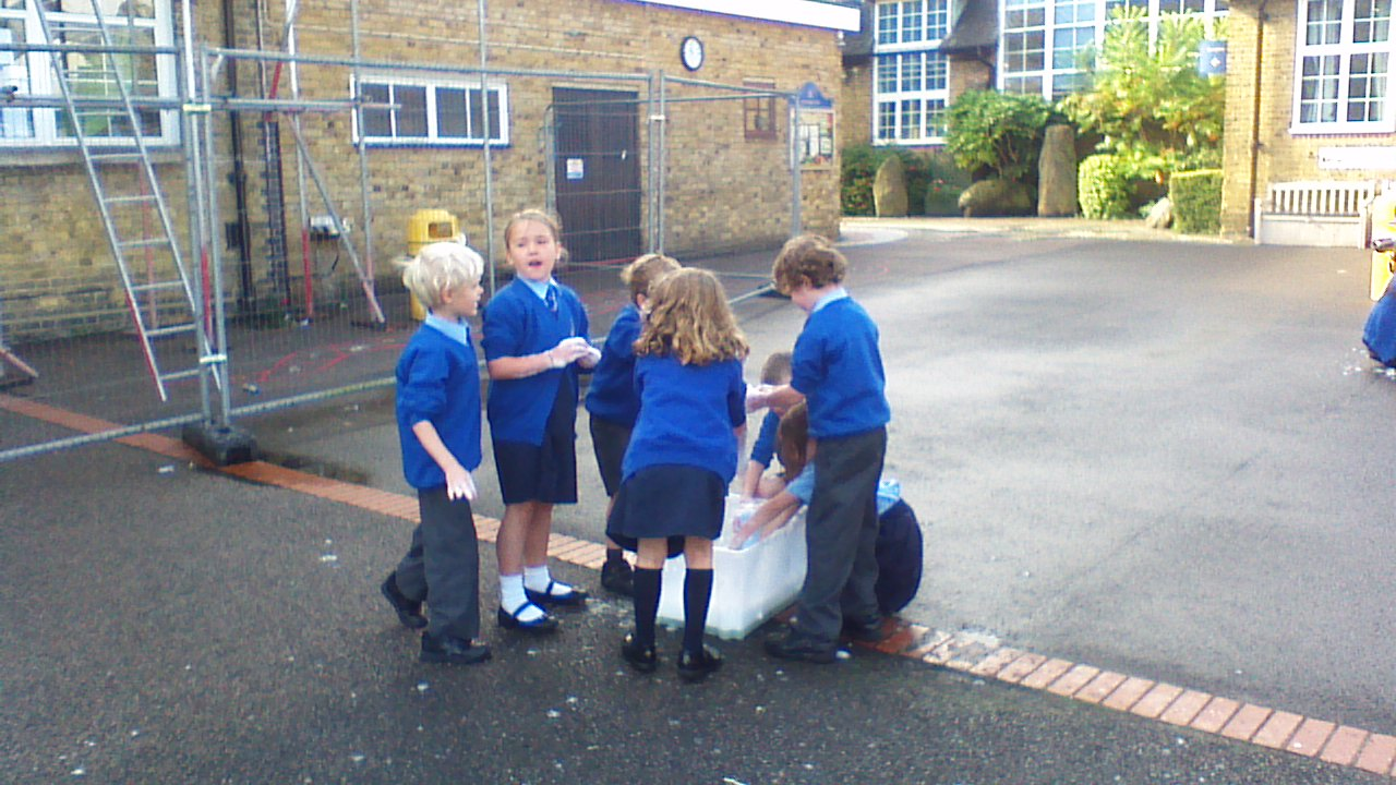 Year 2 traction man 2