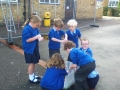 Year 2 traction man 5